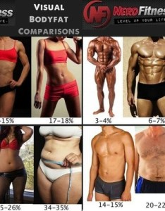 Another visual reference women have  higher natural body fat also what does look like quora rh