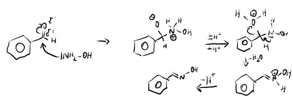 How is the equation between benzaldehyde and hydroxylamine