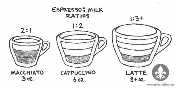 What ratio of coffee/milk should be in a cappuccino? - Quora