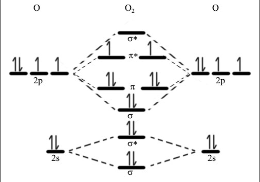 When doing molecular orbitals, the pi-bonds come before