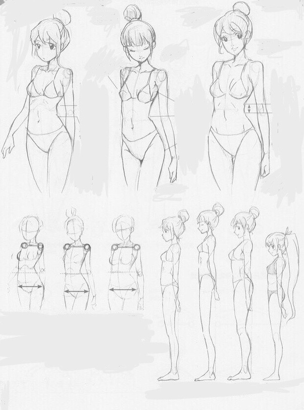 Anime Body Drawing : anime, drawing, Anime, Character, Body., Quora