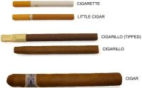 Can I use a tobacco leaf to roll a cigarette? - Quora