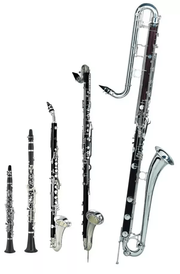 Why does anybody choose to play an odd instrument like a