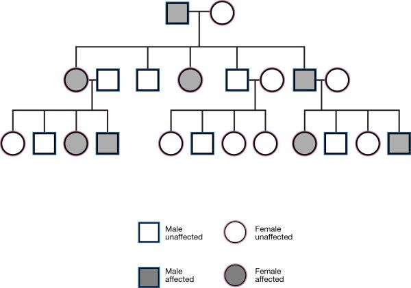 How is the inheritance of traits traced by geneticists