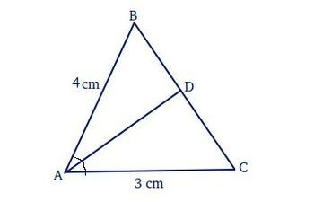 In a ∆ABC, the internal bisector of the angle A meets BC