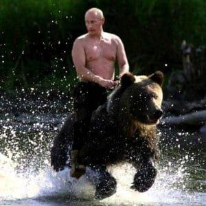 Zum Krieg bereit: USA erspähen massives russisches Truppenaufgebot rund um Moskau Wladimir Putin reitet den russischen Baeren oder bindet dem Westen einen auf Russland Amerika Sanktionen Propaganda
