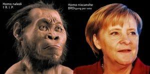 Vom Homo naledi und Homo nixcanshe