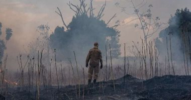 Photo of تفاصيل ارتفاع حرائق الأمازون فى البرازيل دون توقف وسط تحذيرات بيئية
