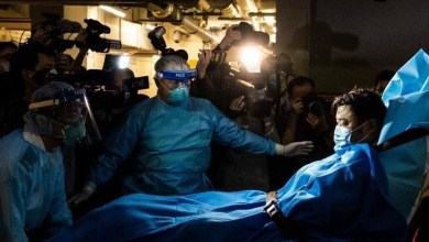 Photo of يوم أمس أعلنت الهند 🇮🇳 في بحث علمي  أنها توصلت لتركيب الحمض النووي لفيروس كورونا الجديد .