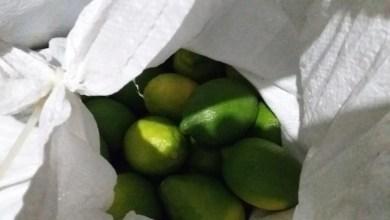 Photo of اعتقال 3 مشتبهين من عرابة بعد سرقة طن من الليمون من بيارة في منطقة الجولان