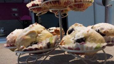 Mini muffins ai mirtilli