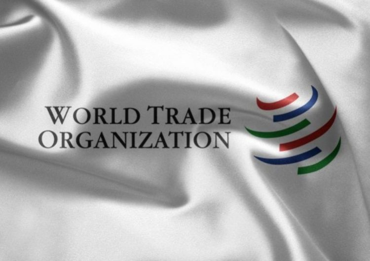 Of Intransigence, Diplomacy and India's WTO Debacle