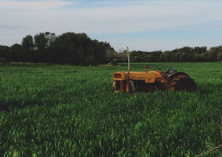 Organic Farming – A New Hope for Farmers in India