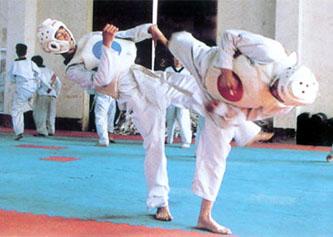 跆拳道_實用拳擊,散打,自由搏擊培訓中心-深圳強身搏擊俱樂部