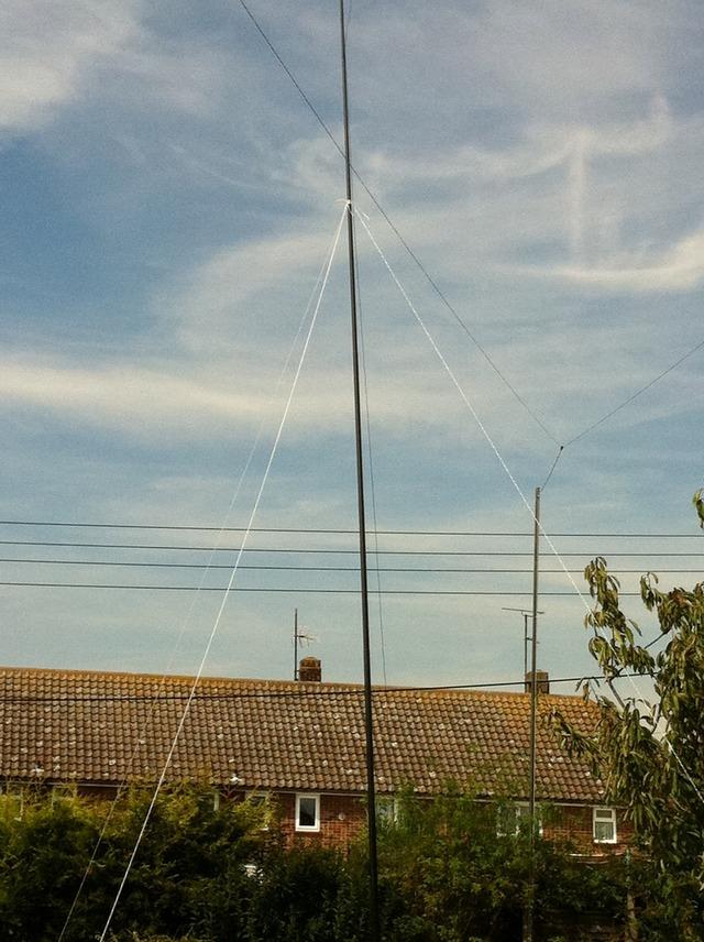 10m roach pole in my back garden