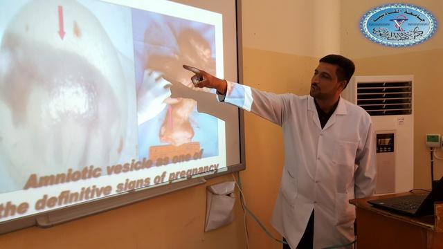 كلية الطب البيطري /جامعة القادسية تقيم حلقة نقاشية حول فحص الحمل باستخدام الجس ألمستقيمي في الأبقار