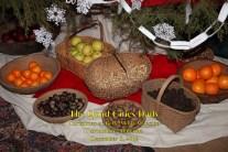 Christmas at Bellmont Plantation_120819_9248