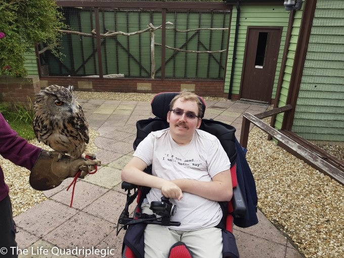 A young man in a powerchair is smiling at the camera and a lady holds an owl on her gloved hand next to him