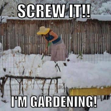 January ~ Seasonal Gardening Tips