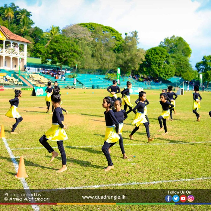 HCK_PRIMARY_SPORTSMEET_2019_OPENNING (166)