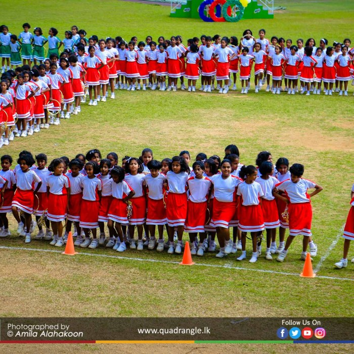 HCK_PRIMARY_SPORTSMEET_2019_DRILLDISPAY (101)
