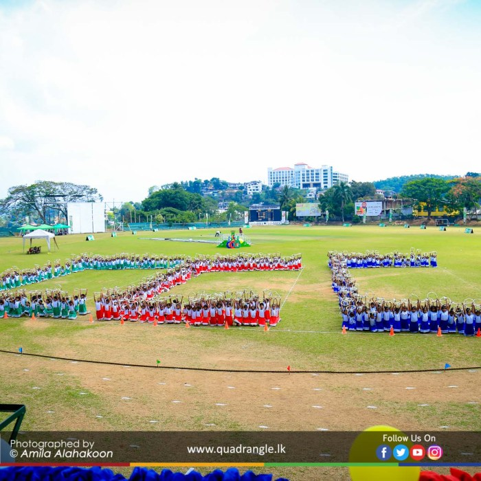 HCK_PRIMARY_SPORTSMEET_2019_DRILLDISPAY (105)