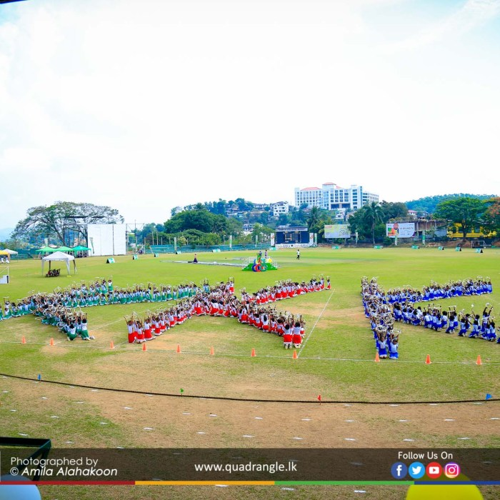 HCK_PRIMARY_SPORTSMEET_2019_DRILLDISPAY (108)
