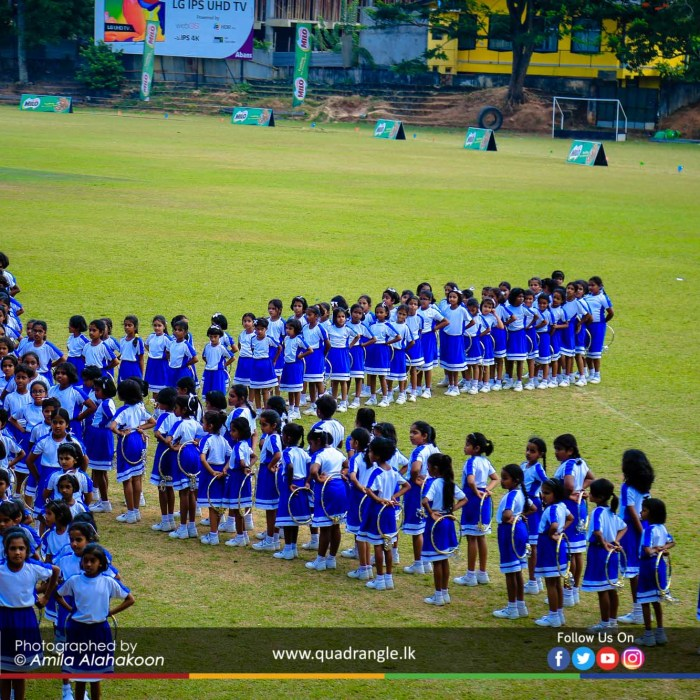 HCK_PRIMARY_SPORTSMEET_2019_DRILLDISPAY (112)