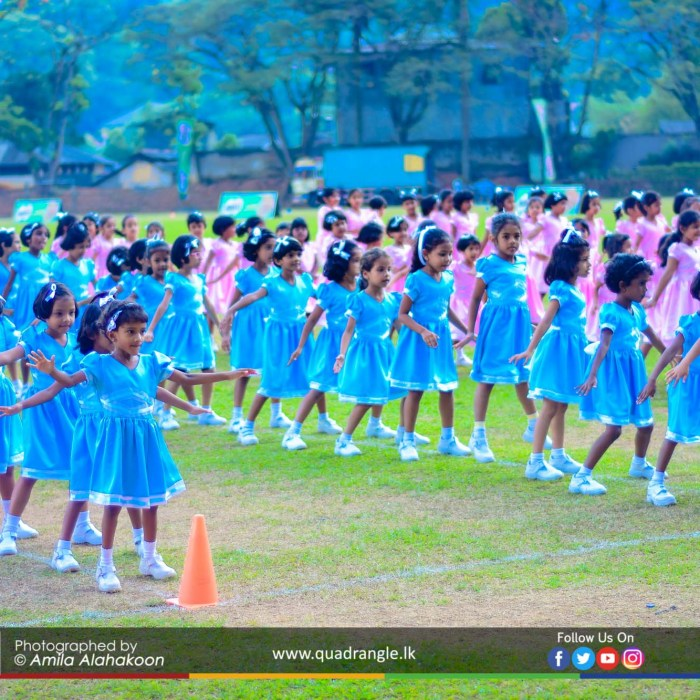HCK_PRIMARY_SPORTSMEET_2019_DRILLDISPAY (13)