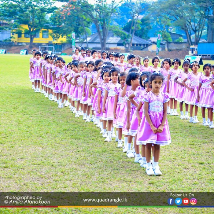 HCK_PRIMARY_SPORTSMEET_2019_DRILLDISPAY (130)