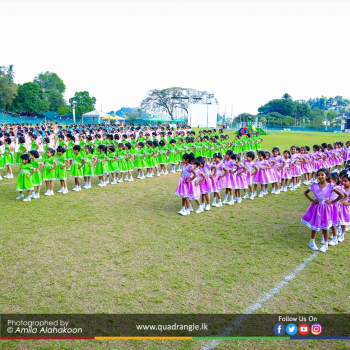HCK_PRIMARY_SPORTSMEET_2019_DRILLDISPAY (132)