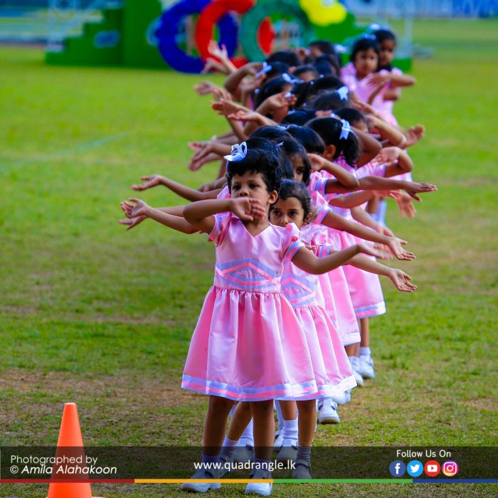 HCK_PRIMARY_SPORTSMEET_2019_DRILLDISPAY (142)