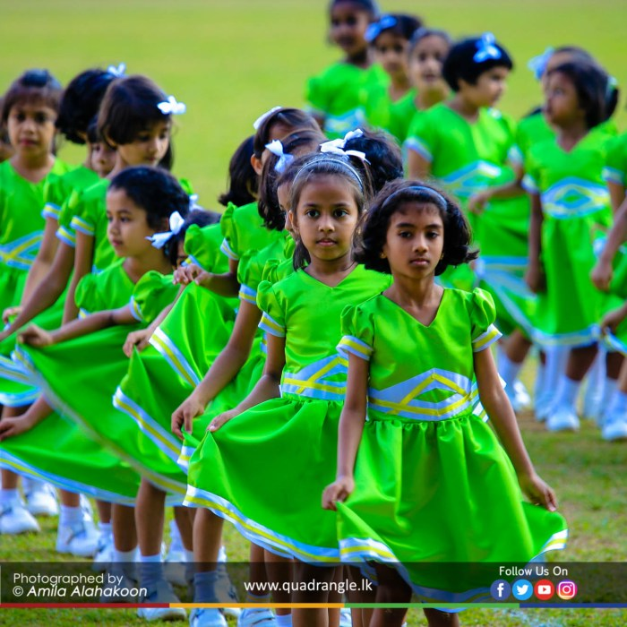 HCK_PRIMARY_SPORTSMEET_2019_DRILLDISPAY (148)