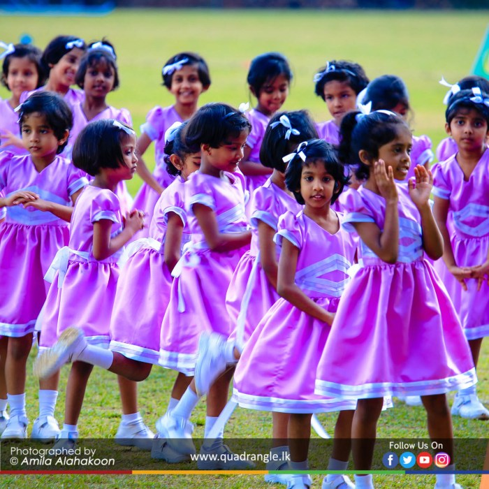 HCK_PRIMARY_SPORTSMEET_2019_DRILLDISPAY (155)