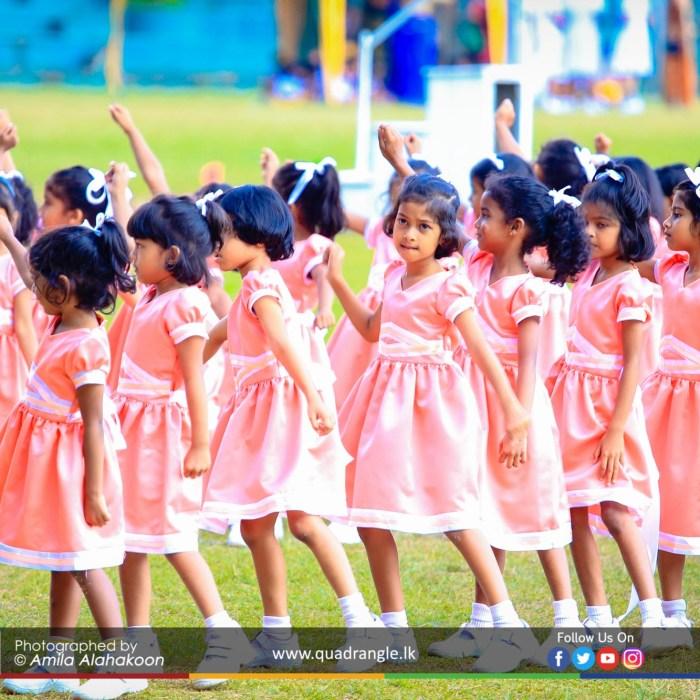 HCK_PRIMARY_SPORTSMEET_2019_DRILLDISPAY (166)