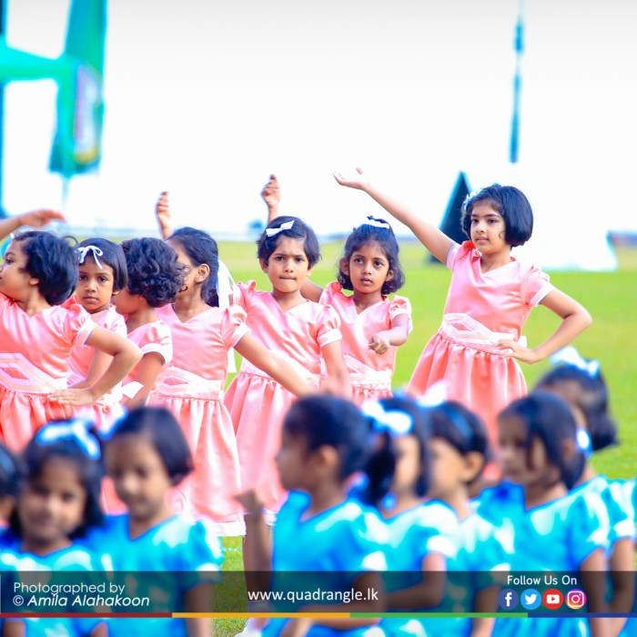 HCK_PRIMARY_SPORTSMEET_2019_DRILLDISPAY (167)