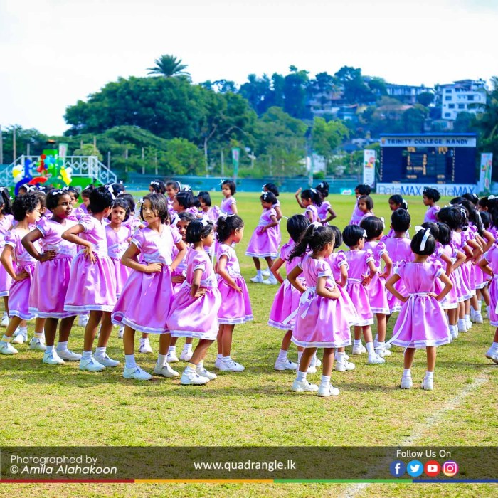HCK_PRIMARY_SPORTSMEET_2019_DRILLDISPAY (173)
