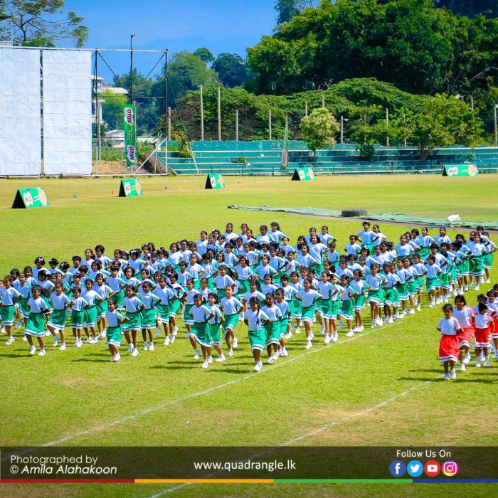 HCK_PRIMARY_SPORTSMEET_2019_DRILLDISPAY (191)