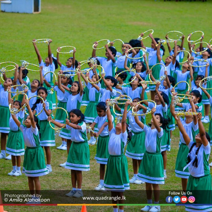 HCK_PRIMARY_SPORTSMEET_2019_DRILLDISPAY (197)