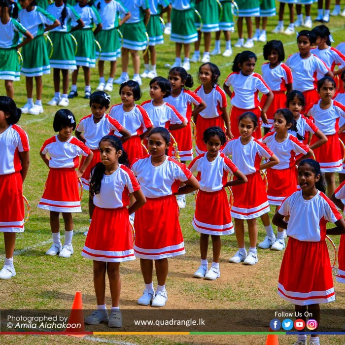HCK_PRIMARY_SPORTSMEET_2019_DRILLDISPAY (203)