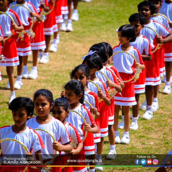 HCK_PRIMARY_SPORTSMEET_2019_DRILLDISPAY (214)