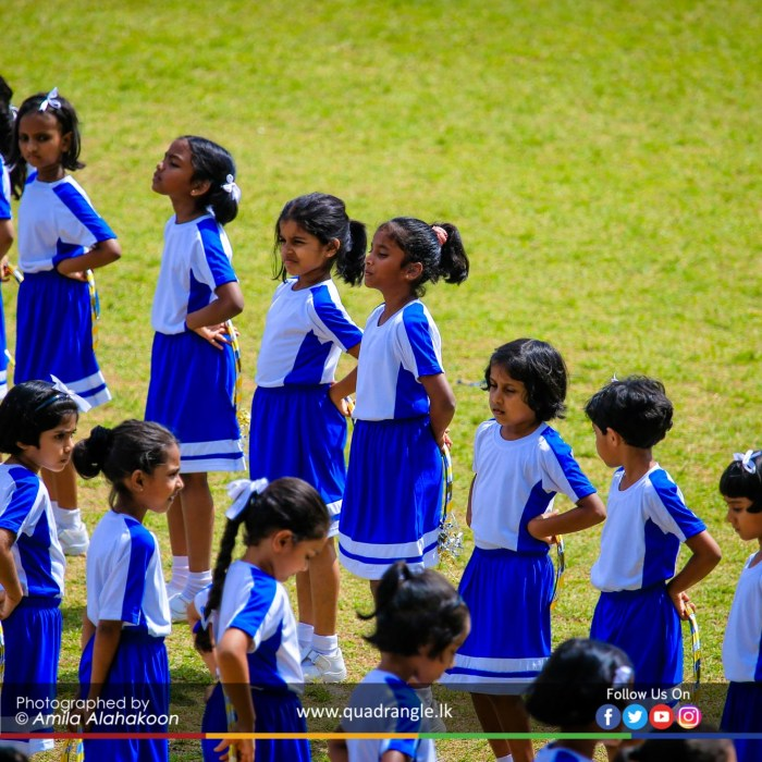 HCK_PRIMARY_SPORTSMEET_2019_DRILLDISPAY (220)