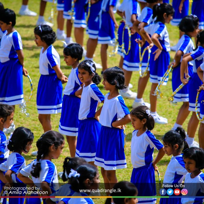 HCK_PRIMARY_SPORTSMEET_2019_DRILLDISPAY (222)