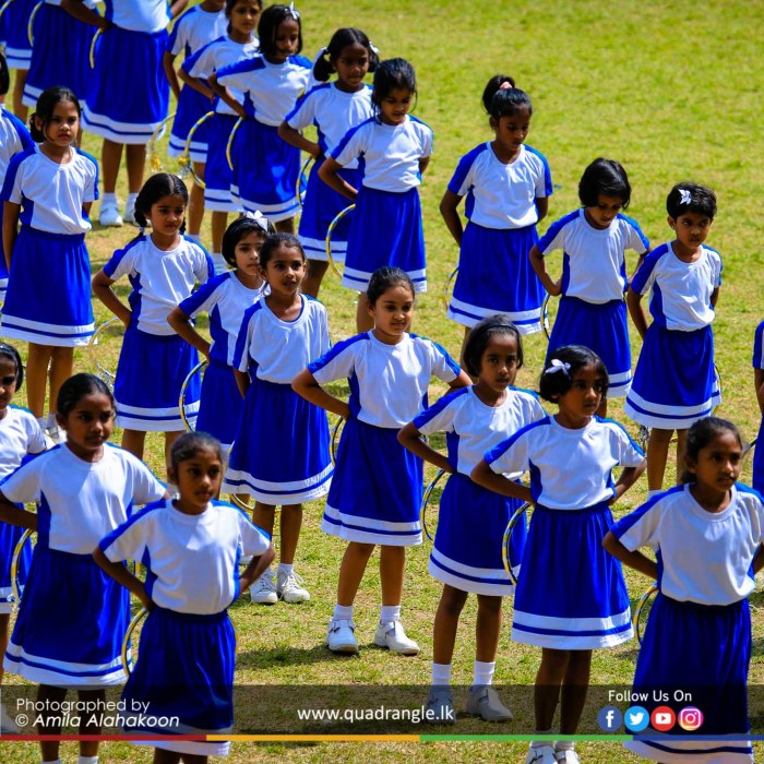 HCK_PRIMARY_SPORTSMEET_2019_DRILLDISPAY (226)