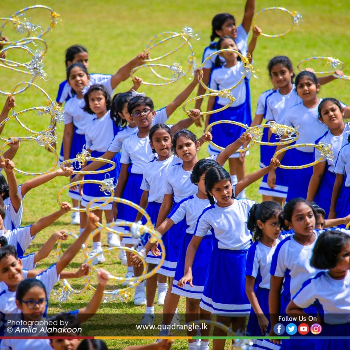 HCK_PRIMARY_SPORTSMEET_2019_DRILLDISPAY (230)