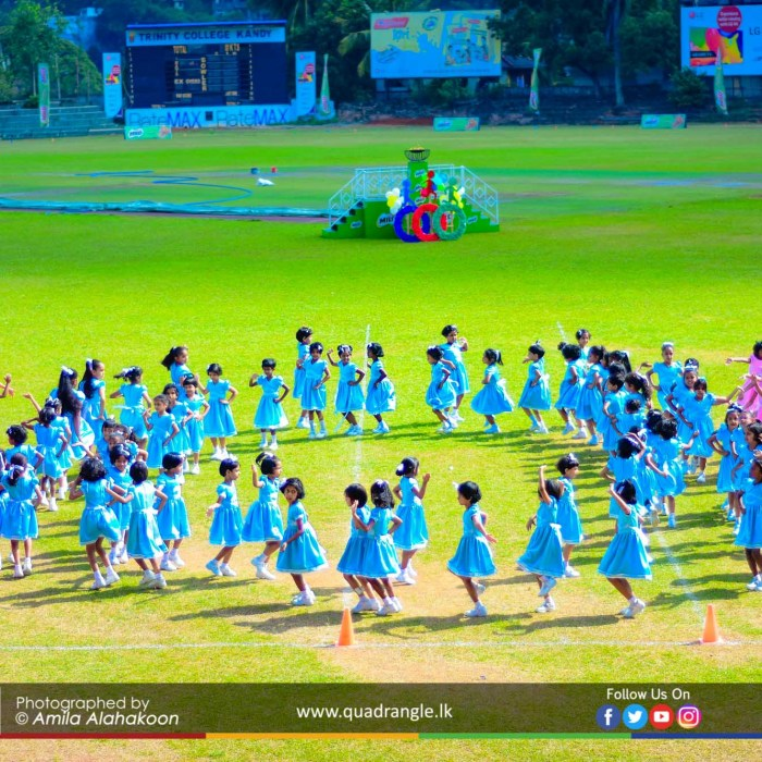 HCK_PRIMARY_SPORTSMEET_2019_DRILLDISPAY (25)