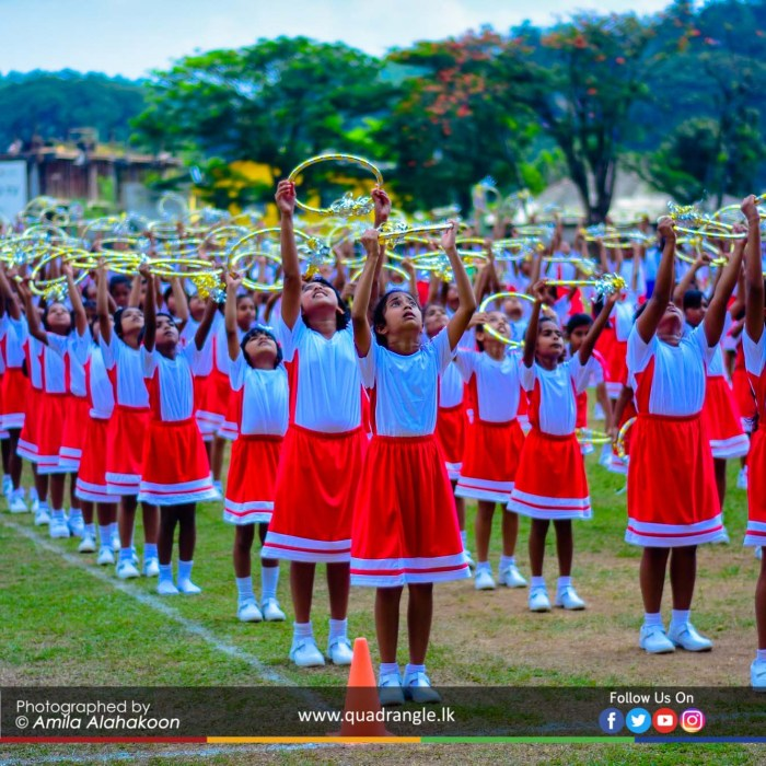 HCK_PRIMARY_SPORTSMEET_2019_DRILLDISPAY (35)