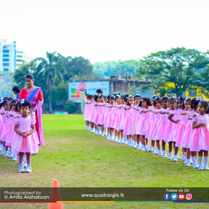 HCK_PRIMARY_SPORTSMEET_2019_DRILLDISPAY (4)