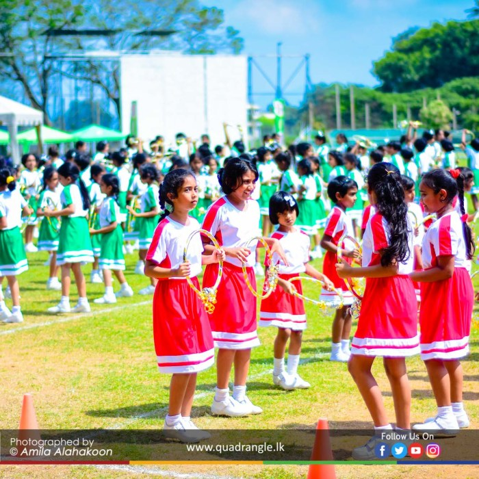HCK_PRIMARY_SPORTSMEET_2019_DRILLDISPAY (44)