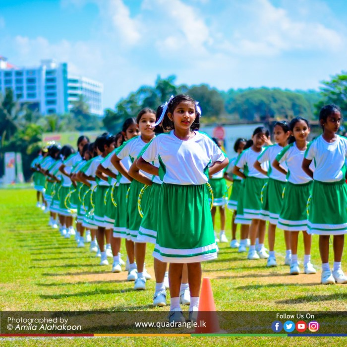 HCK_PRIMARY_SPORTSMEET_2019_DRILLDISPAY (47)